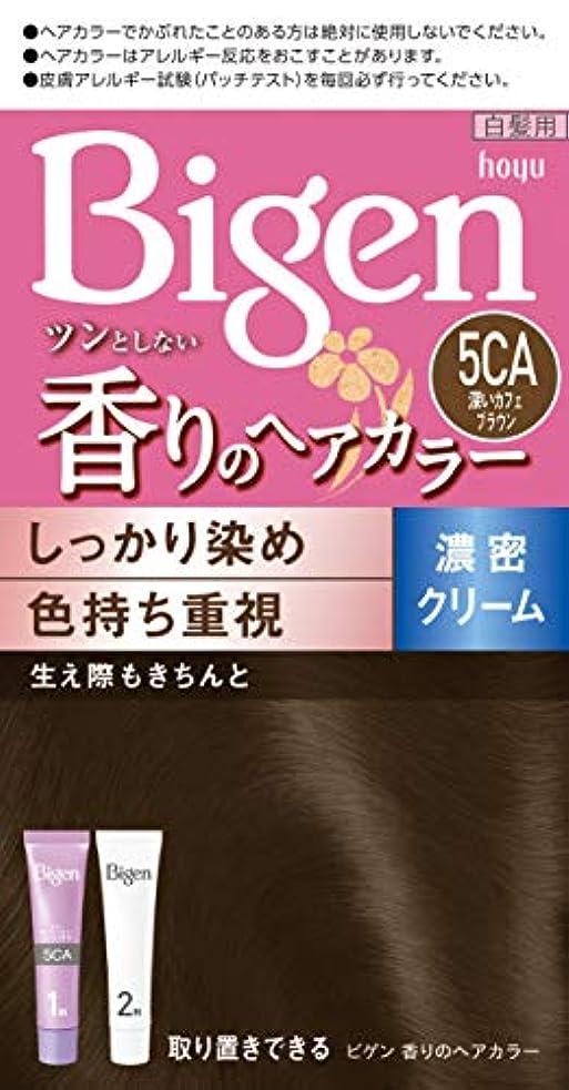 敵対的塗抹参照するビゲン香りのヘアカラークリーム5CA (深いカフェブラウン) 40g+40g ホーユー