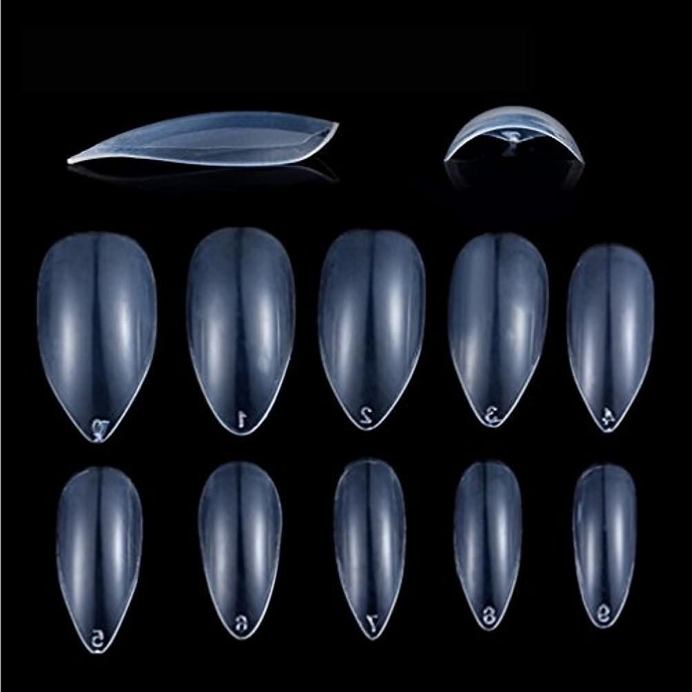 うるさいアカデミック追うHonel つけ爪 無地 ショート ネイルチップ クリア ネイルチップ 短い 600枚入れ 10サイズ 爪にピッタリ 付け爪 練習用 透明 シャープ ポイント (ハロウィン コスプレも対応できます)