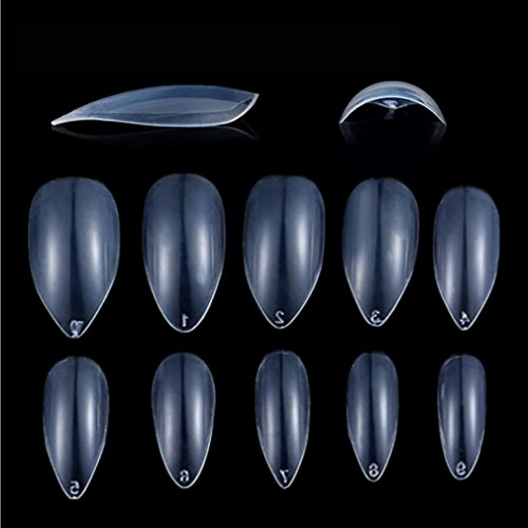 モンク呼び起こす切り刻むHonel つけ爪 無地 ショート ネイルチップ クリア ネイルチップ 短い 600枚入れ 10サイズ 爪にピッタリ 付け爪 練習用 透明 シャープ ポイント (ハロウィン コスプレも対応できます)