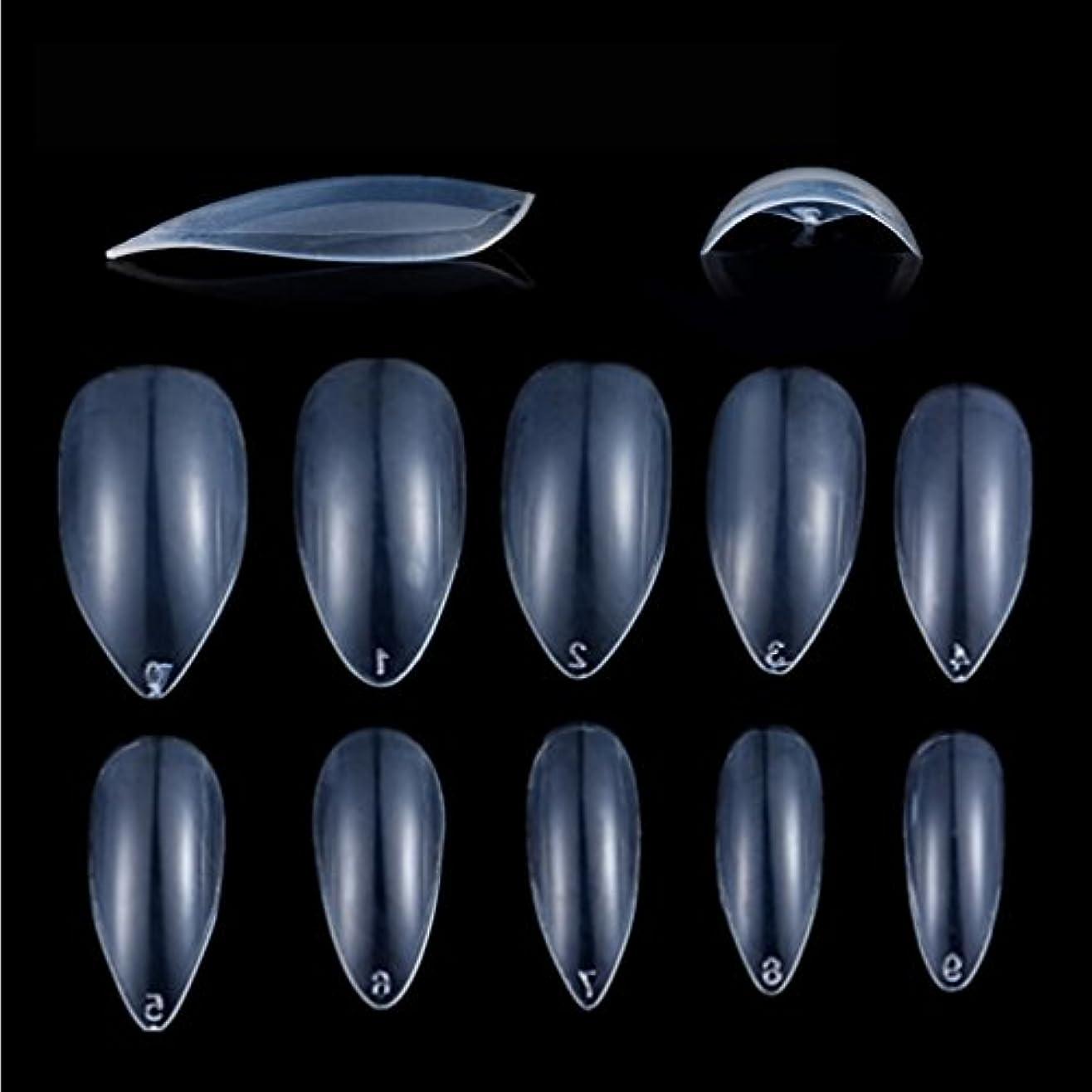 計画甘味上Honel つけ爪 無地 ショート ネイルチップ クリア ネイルチップ 短い 600枚入れ 10サイズ 爪にピッタリ 付け爪 練習用 透明 シャープ ポイント (ハロウィン コスプレも対応できます)