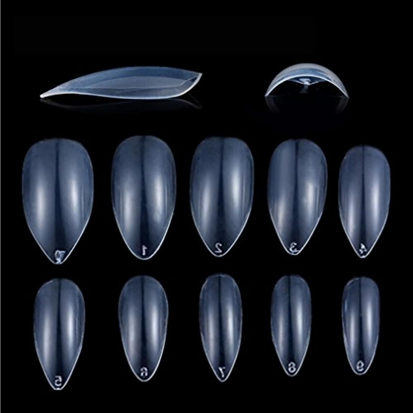 アルバニーシネウィれるHonel つけ爪 無地 ショート ネイルチップ クリア ネイルチップ 短い 600枚入れ 10サイズ 爪にピッタリ 付け爪 練習用 透明 シャープ ポイント (ハロウィン コスプレも対応できます)
