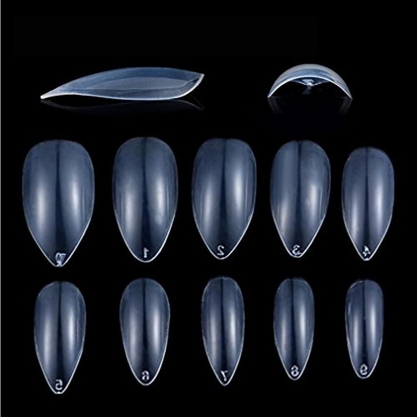 リマーク提供シャンパンHonel つけ爪 無地 ショート ネイルチップ クリア ネイルチップ 短い 600枚入れ 10サイズ 爪にピッタリ 付け爪 練習用 透明 シャープ ポイント (ハロウィン コスプレも対応できます)