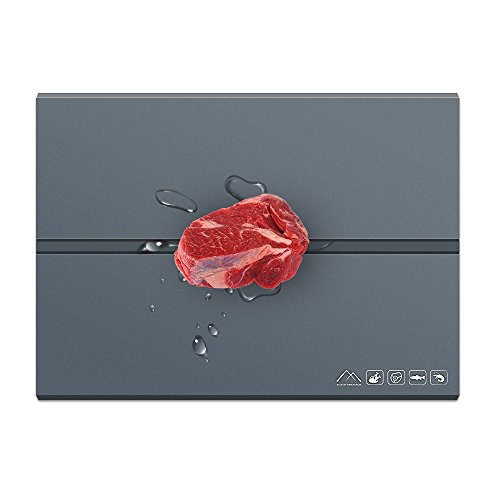 lrego 肉、魚、様々な食材急速解凍プレート 素早く解凍クイックプレート