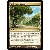 マジック:ザ・ギャザリング 【風変わりな果樹園/Exotic Orchard】【レア】 PLC12-117-R ≪プレインチェイス2012≫
