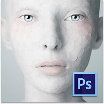 Adobe Photoshop CS6 Windows版 [ダウンロード] (旧製品)