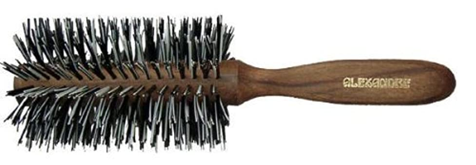 賞賛長方形膨張するアレキ ゴマ毛ロール ブラシL