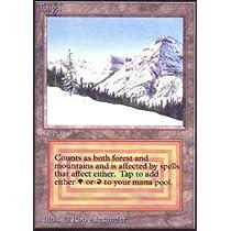 Magic: the Gathering - Taiga - Beta