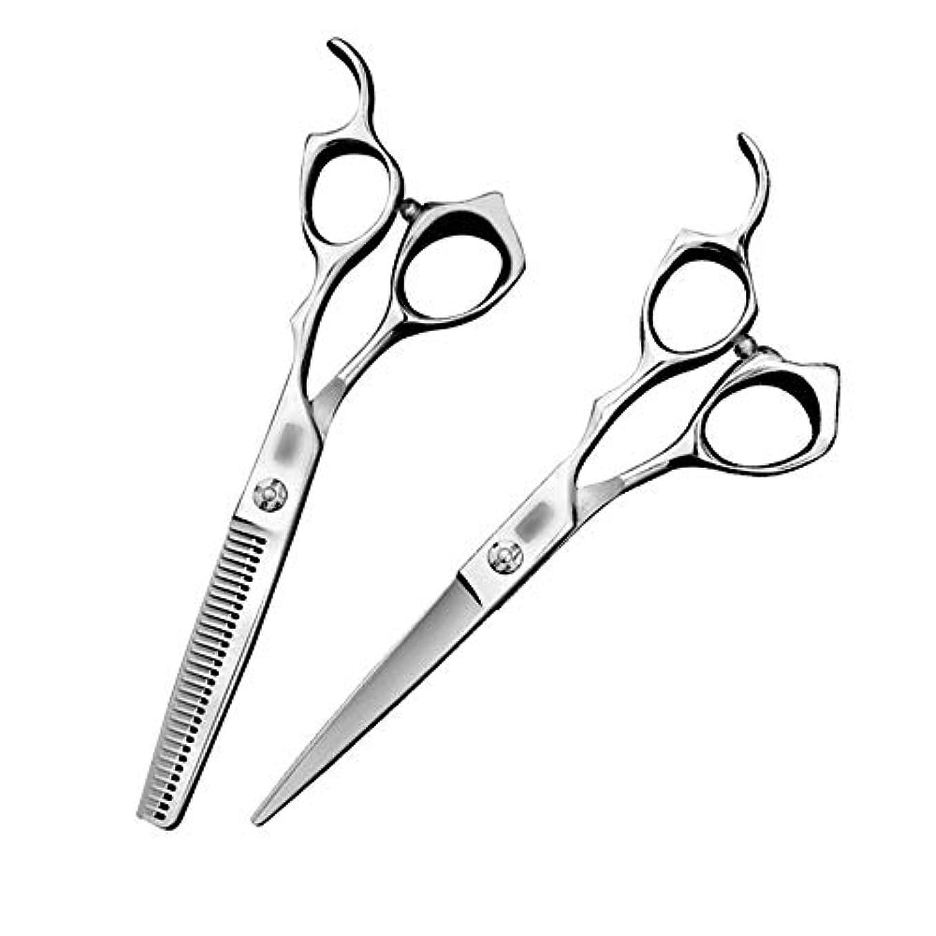 再集計階思想HXS-HXS 6インチの美容専門ハイエンド理髪はさみ散髪はさみフラット+トゥースはさみセット(カラー:シルバー) 理髪はさみ