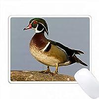ウッドダック、エックススポンサー、ログインしている湿地の男性、Marion Co. IL PC Mouse Pad パソコン マウスパッド