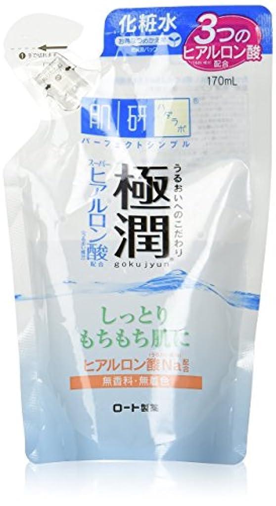 ルーチン発掘するダイジェスト肌ラボ 極潤 ヒアルロン液 つめかえ用 170mL