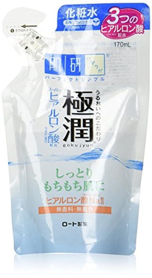 モットー簡単なサイクロプス肌ラボ 極潤 ヒアルロン液 つめかえ用 170mL