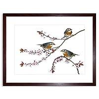 Photo Composition Animal Birds Red Billed Leiothrix Framed Wall Art Print