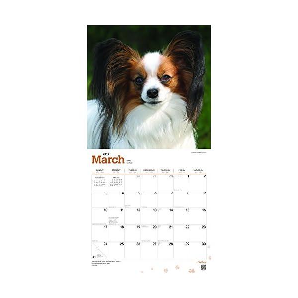 Papillons 2019 Calendarの紹介画像3