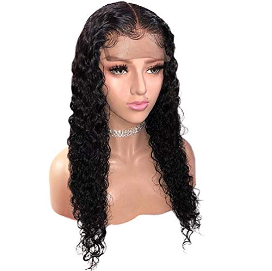 価格所有権あたたかい女性ブラジルフロントレースかつら人間の髪の毛130%合成合成かつら耐熱毛髪のかつら黒24インチ