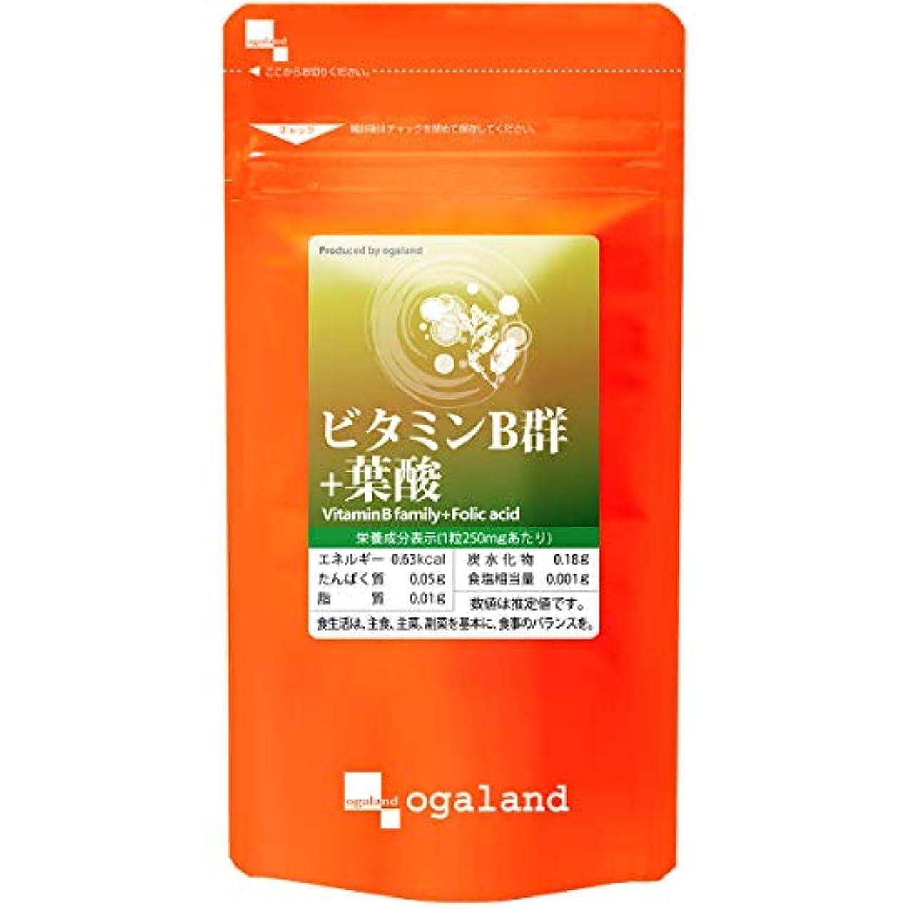 リーン休憩対象お徳用 ビタミンB群 + 葉酸 (270粒/約3ヶ月分)