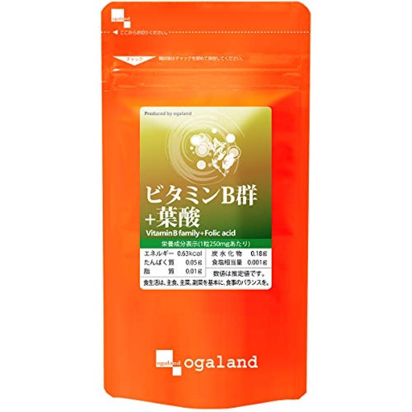 強い平日従者お徳用 ビタミンB群 + 葉酸 (270粒/約3ヶ月分)