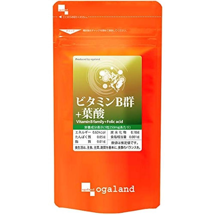 お徳用 ビタミンB群 + 葉酸 (270粒/約3ヶ月分)