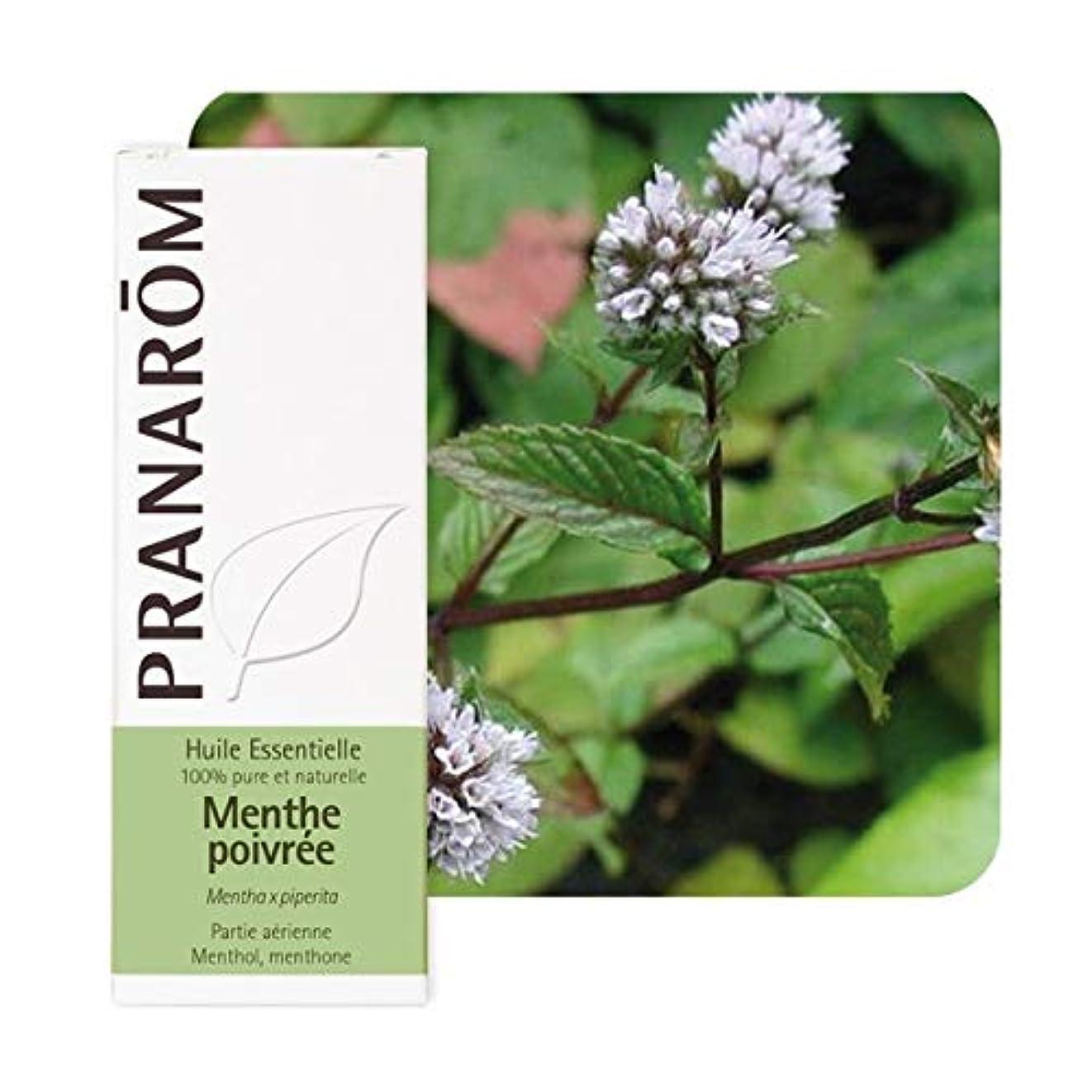 土器スペシャリスト喉が渇いたプラナロム ペパーミント 10ml (PRANAROM ケモタイプ精油)Mentha x piperita[並行輸入品] …