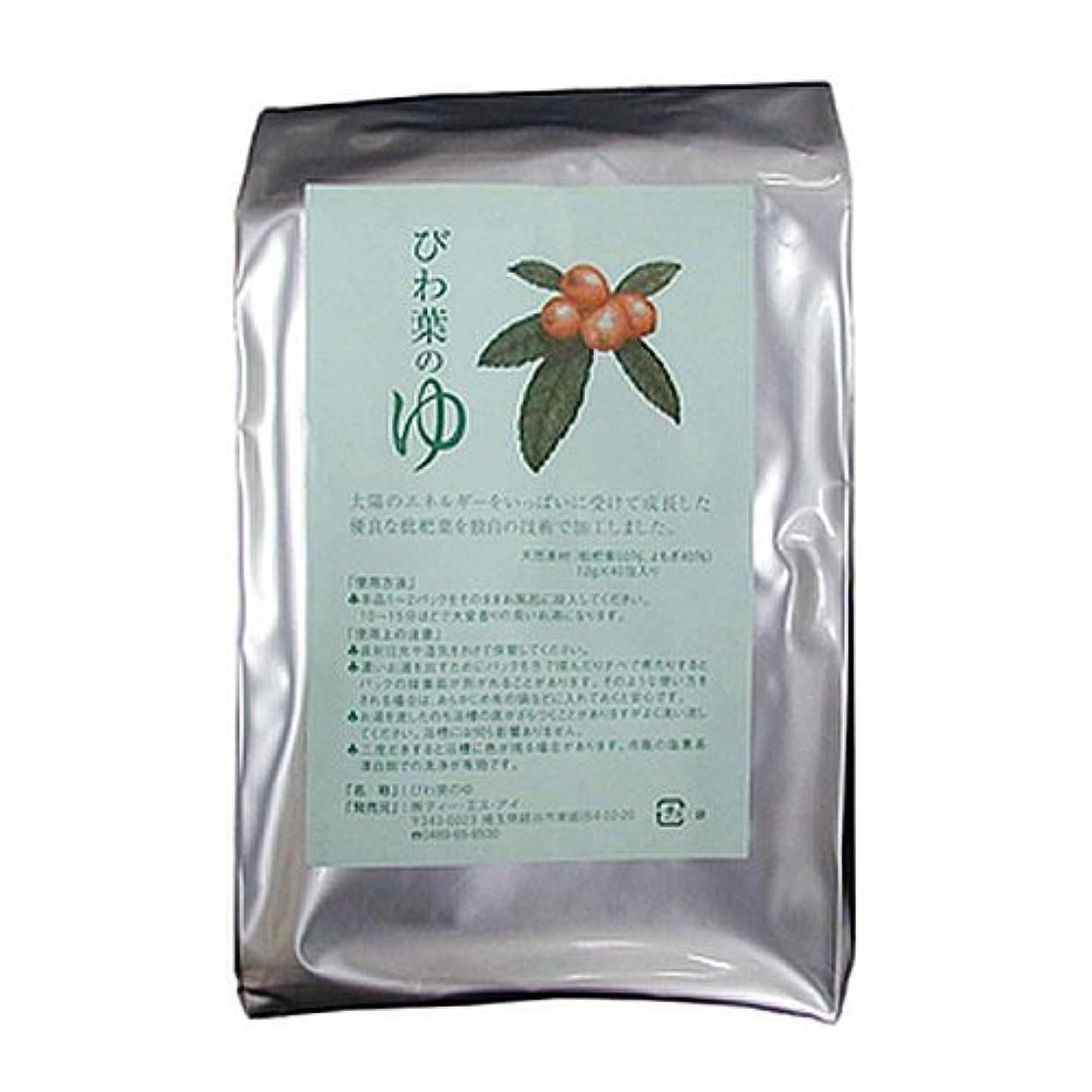 砂利バッテリー既婚びわ葉のゆ 12g×40包