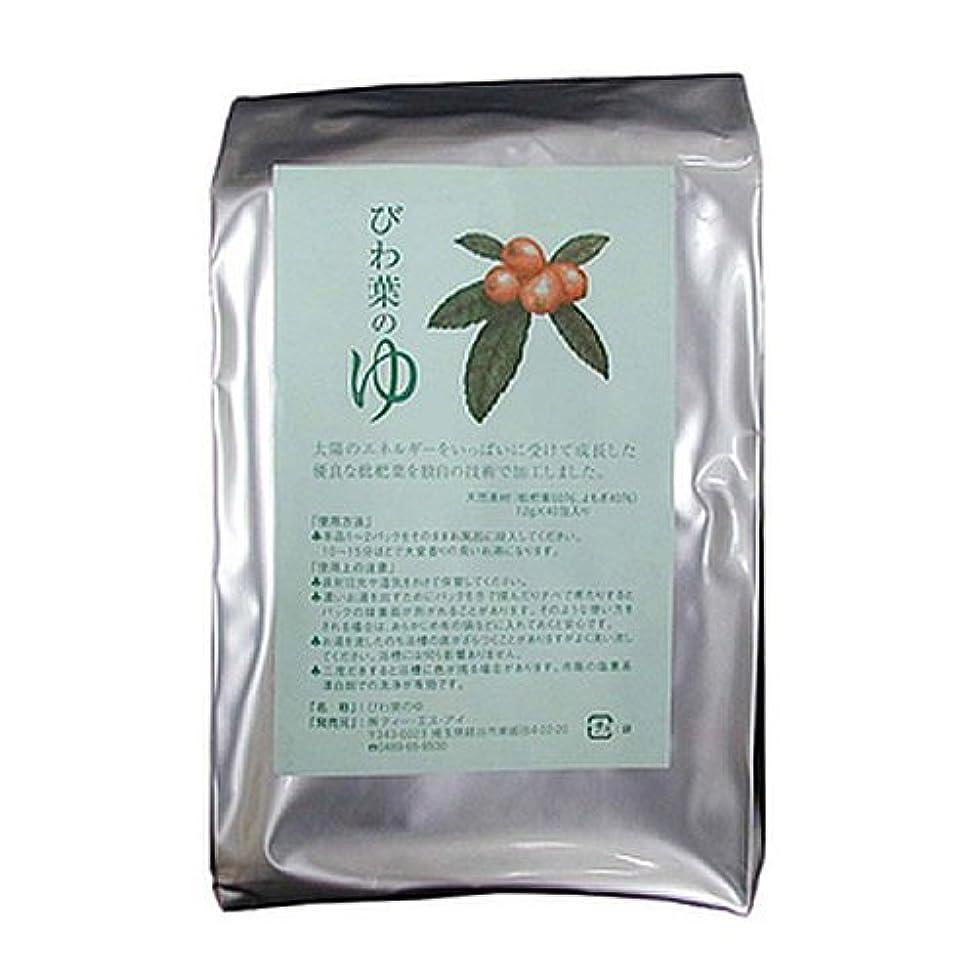 意味前投薬感謝祭びわ葉のゆ 12g×40包