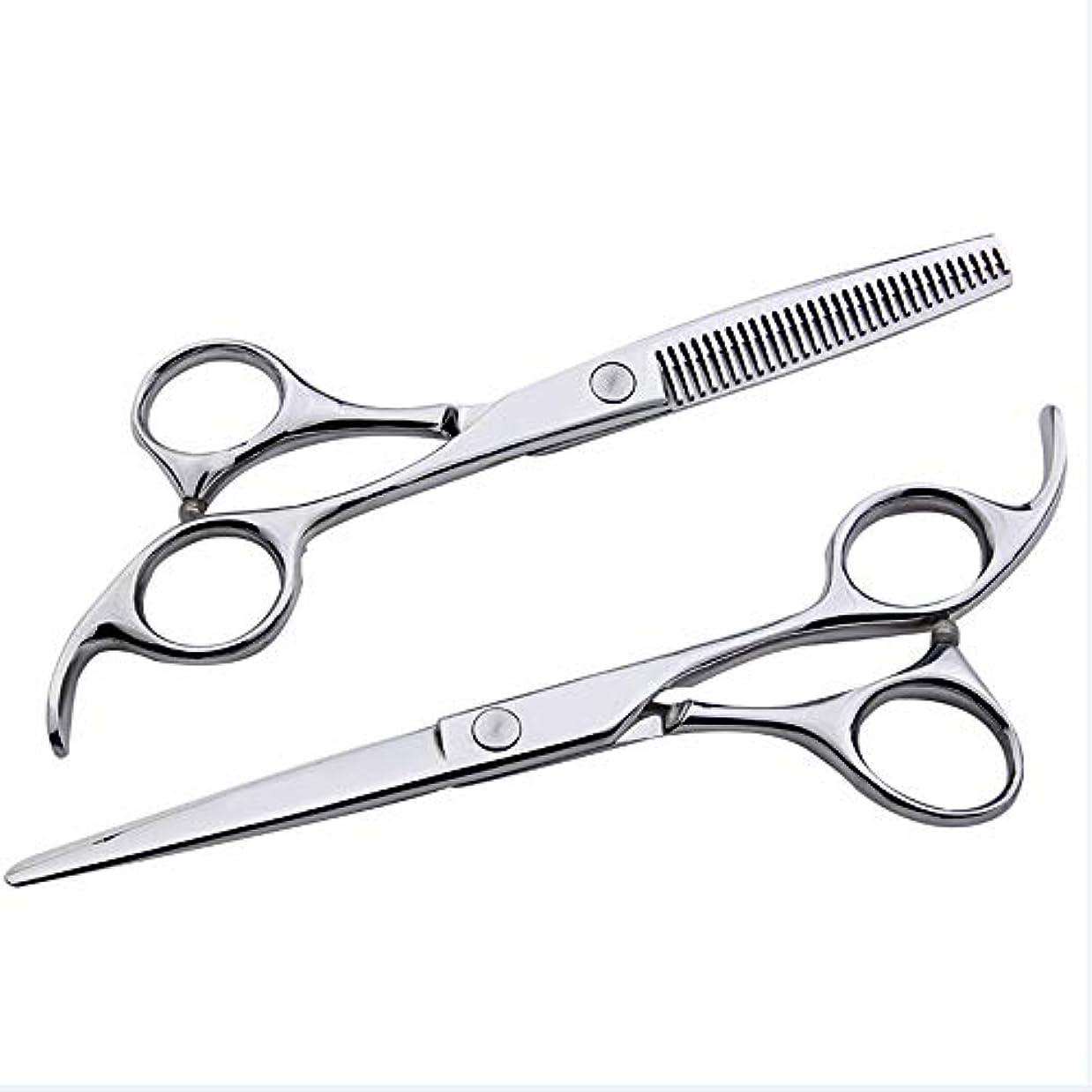 を通してメーター6インチ美容院プロフェッショナル理髪セット、フラット+歯シザー家族理髪ツールセット モデリングツール (色 : Silver)
