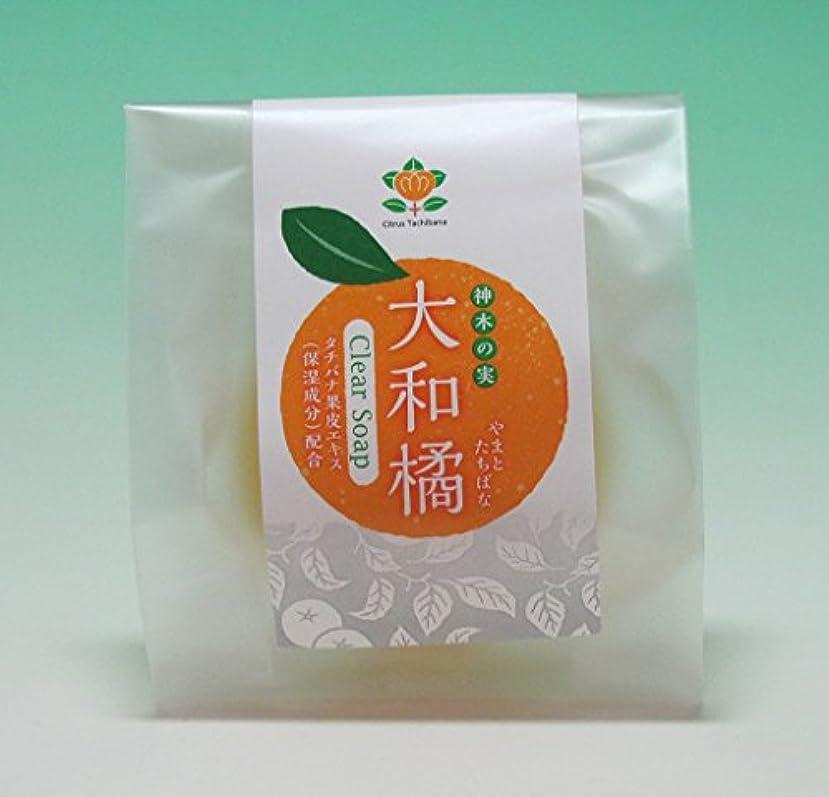 住人強調する実業家神木の果実 大和橘枠練石鹸