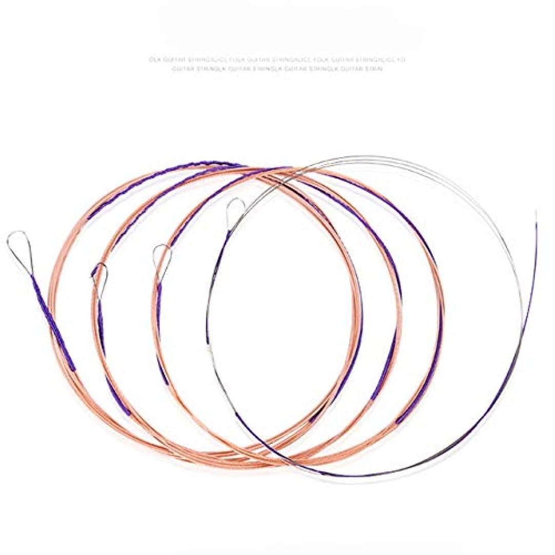 条約コウモリ高い友美 楽器アクセサリーPipa Strings Professional Strings AT-40