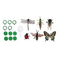 モデル虫 昆虫モデル パズル科学 動物模型 砂テーブル 教育 おもちゃ
