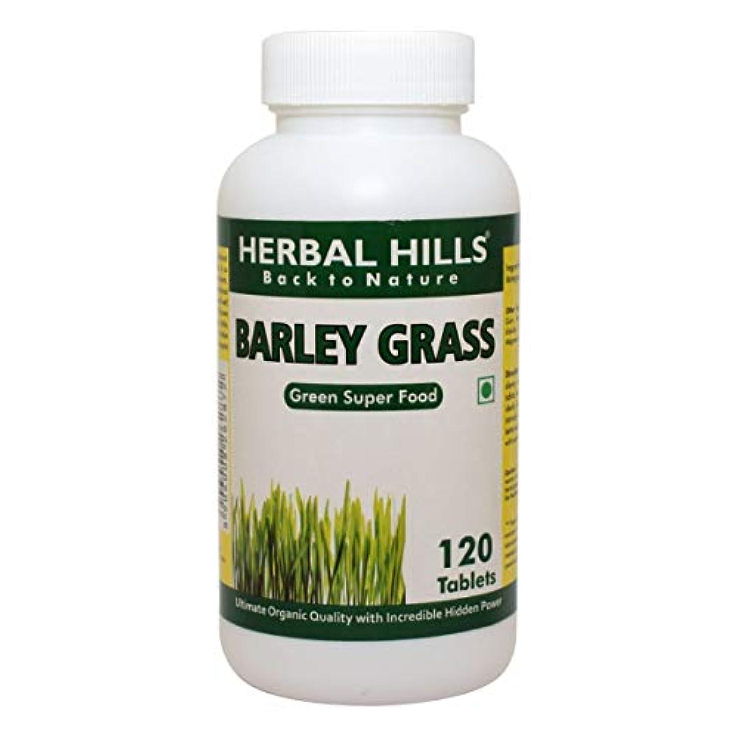 フォアタイプ恐れる前部Barley Grass Food Supplement 500mg, 120 Tablets - 大麦草食品サプリメント