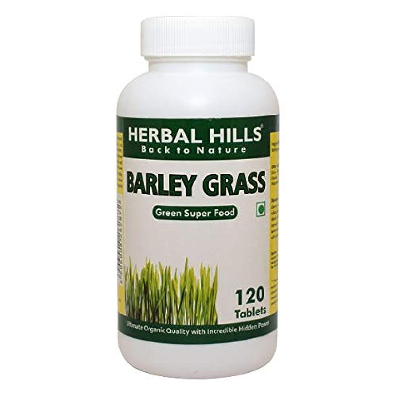 テレビ局吸収破壊的なBarley Grass Food Supplement 500mg, 120 Tablets - 大麦草食品サプリメント