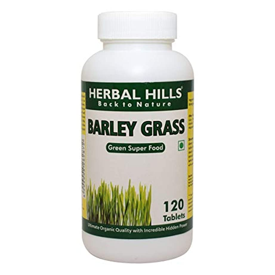 ラップ詐欺師店主Barley Grass Food Supplement 500mg, 120 Tablets - 大麦草食品サプリメント