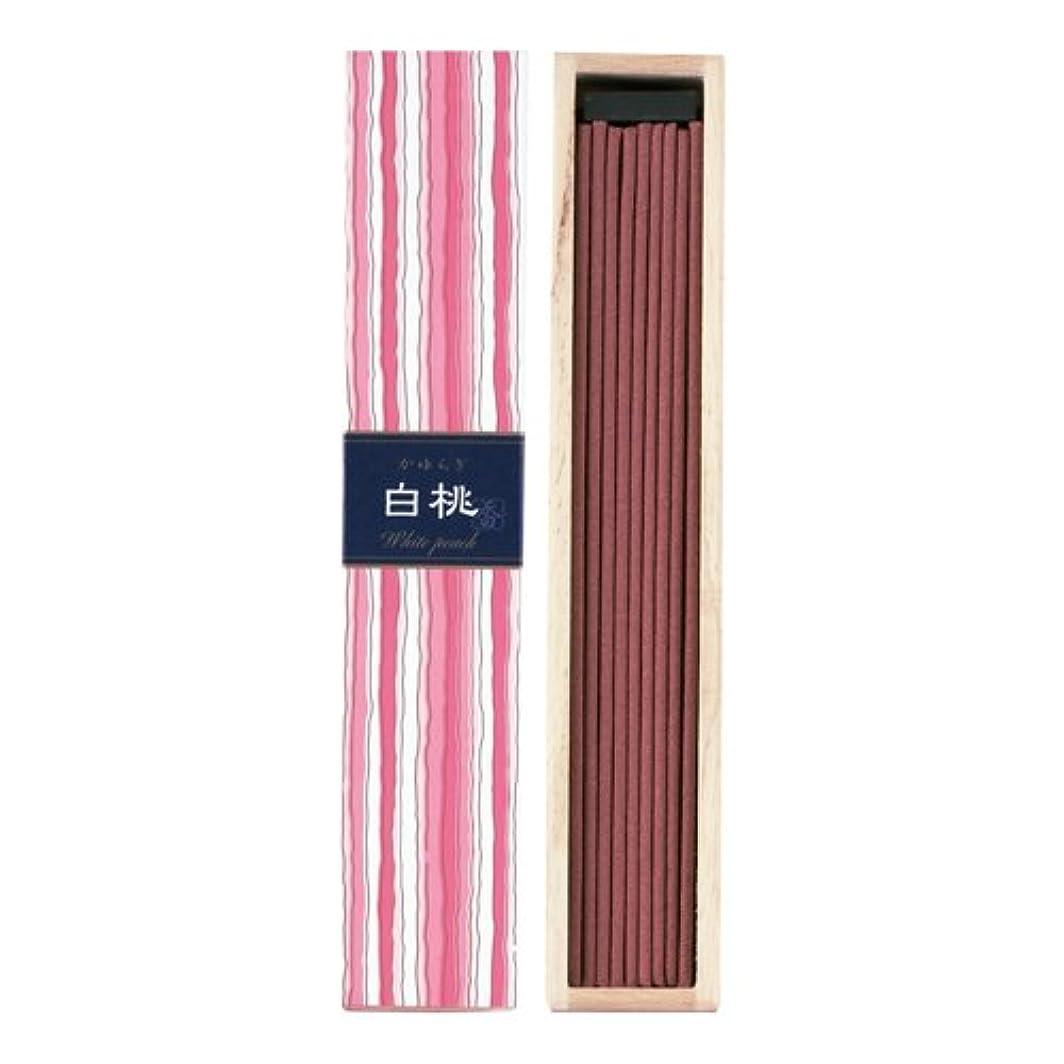 クリエイティブパイプラインはしごかゆらぎ スティック 白桃40本 × 10個セット