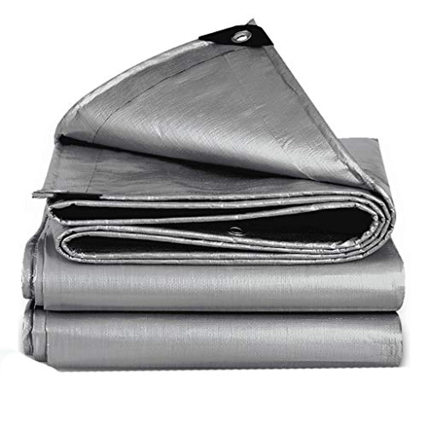 道徳教育節約するポゴスティックジャンプ防雨布カーサンシェード屋外シェード布肥厚防雨布防水日焼け止め防水シート雨小屋 (サイズ さいず : 2m*3m)