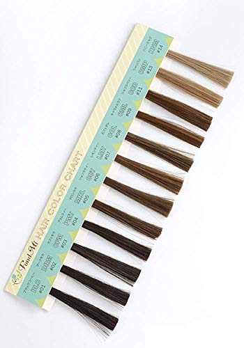 FondMi ヘアカラーチャート 全12色 ウィッグ、エクステ用カラーサンプル カラー見本 フォンドミィ