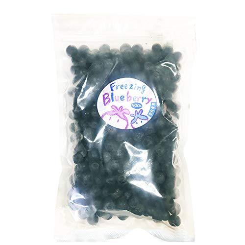 冷凍ブルーベリー500g×5P 堀内果実園 無農薬栽培 安心 安全