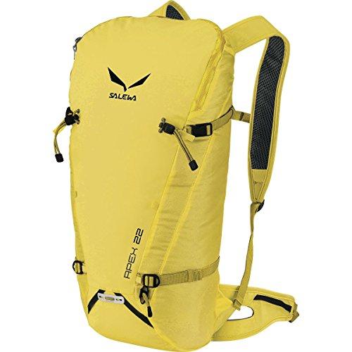 サレワ バッグ バックパック・リュックサック Salewa Apex 22 Backpack - 1343cu in Kamille 1fd [並行輸入品]