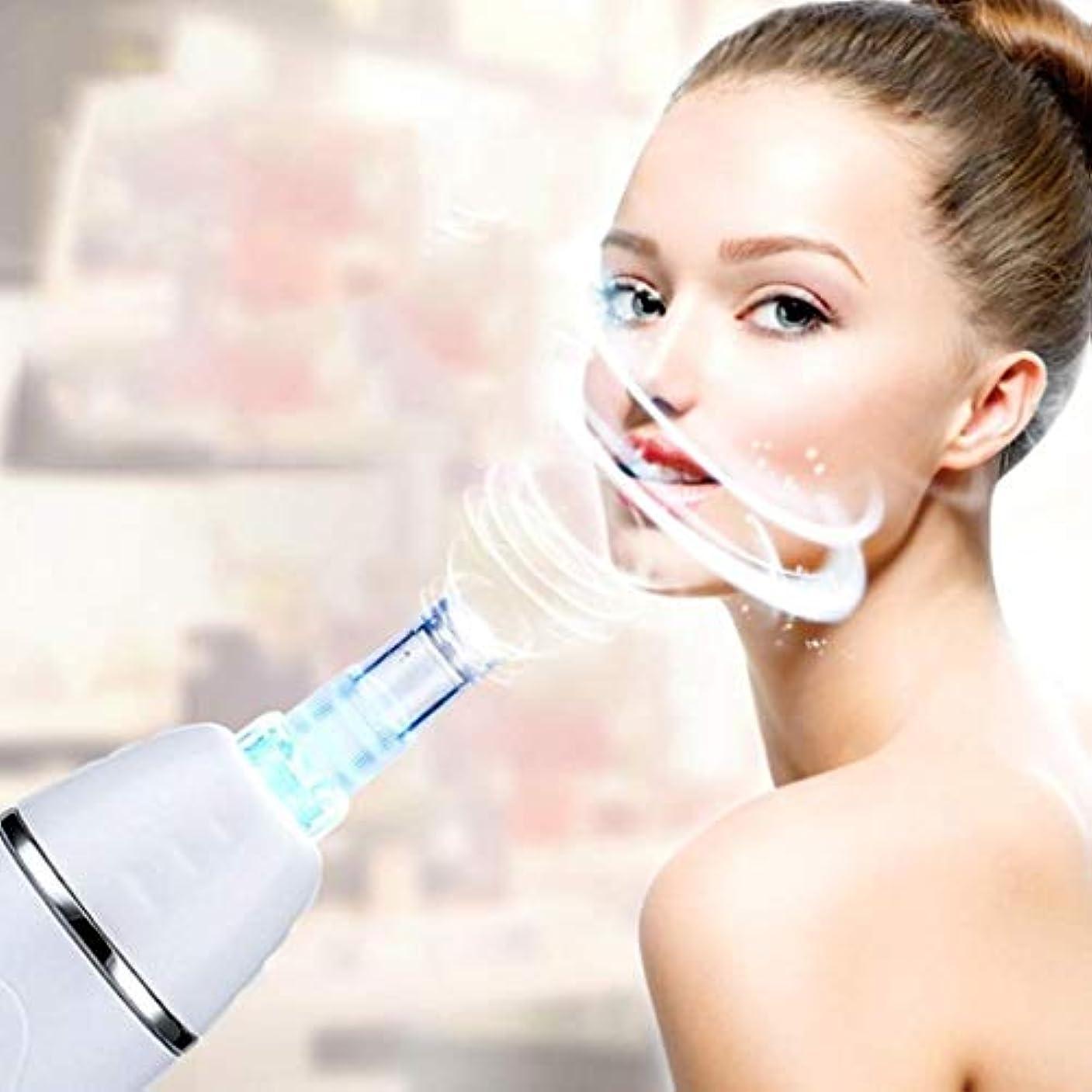 探偵口モットー美容機器、顔にきび毛穴クリーナー、にきびの除去、しわ、メラニンの沈殿を減らす