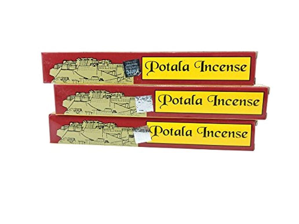 手順昼食巡礼者チベットの手3ボックスPotala 60チベット従来のIncense Sticks