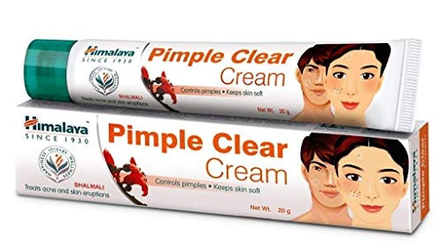 ジェスチャー猫背パイプラインHimalaya Pimple Cream, 20g