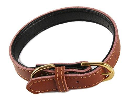 VIPITH 犬の首輪 丈夫なレザーのクラシック ペットドッグカラー 調節可能なバックル 小型犬 中型犬用首輪 ペット用品 5穴 サイズ:M (ブラウン)