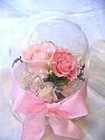 ドーム入りアレンジ芽ピンクのバラのプリザーブドフラワー