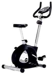ALINCO(アルインコ) エアロマグネティックバイク AF6500