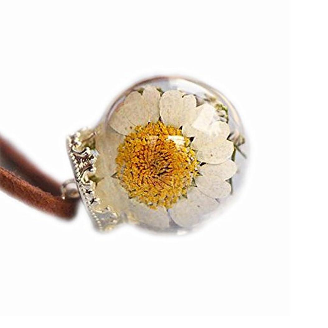 開梱フォルダそばに美しい乾燥した花のペンダントネックレス特別なネックレス良いギフト