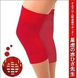 星虎の赤ひざ先生(2枚組) LLサイズ・44~54cm