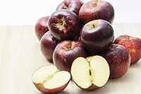 【・農園より産地直送】小山果樹園の秋映 プレミアム(贈答用・特選品質) 約9kg24~40個入