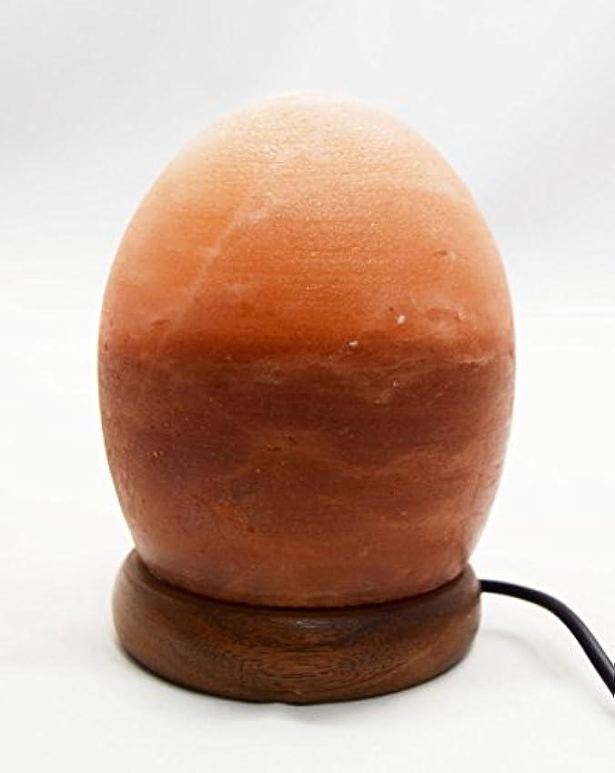 あご舌なライトニングヒマラヤ岩塩 ランプ グラデーションランプ 空気浄化と癒しの灯り 岩塩ライト Salt Therapy ソルトテラピー