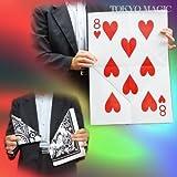 マジック マンモス?カードの復活(5枚入り) ACS-1349