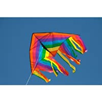 HQ Kites Delta Fountain 47' Kite おもちゃ [並行輸入品]