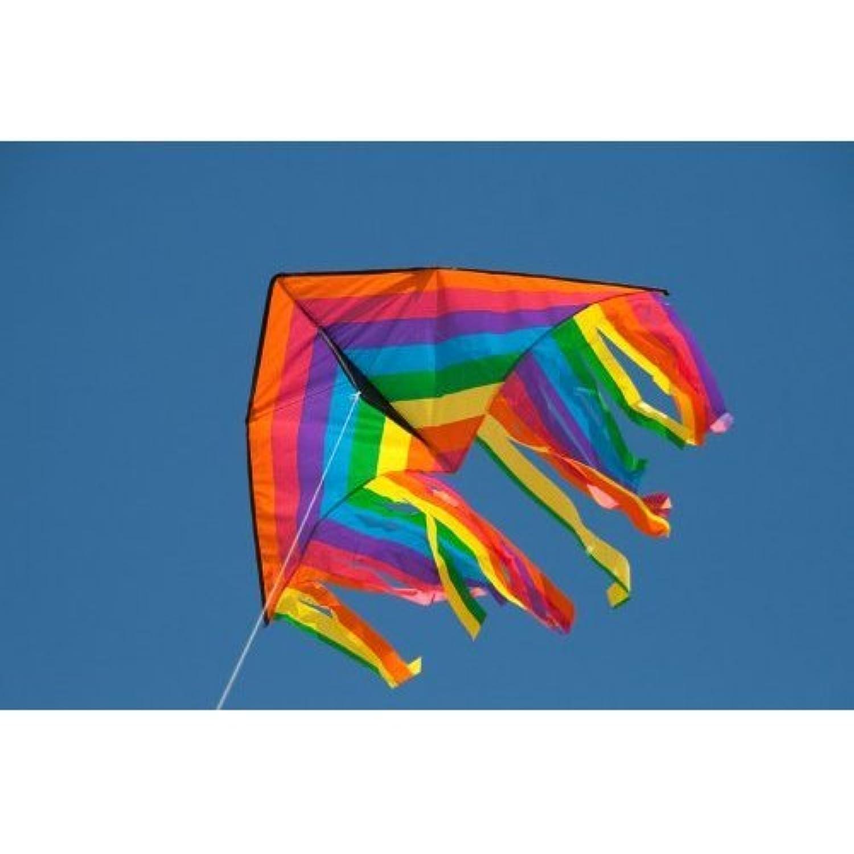 HQ Kites Delta Fountain 47' Kite おもちゃ [並行輸入品]