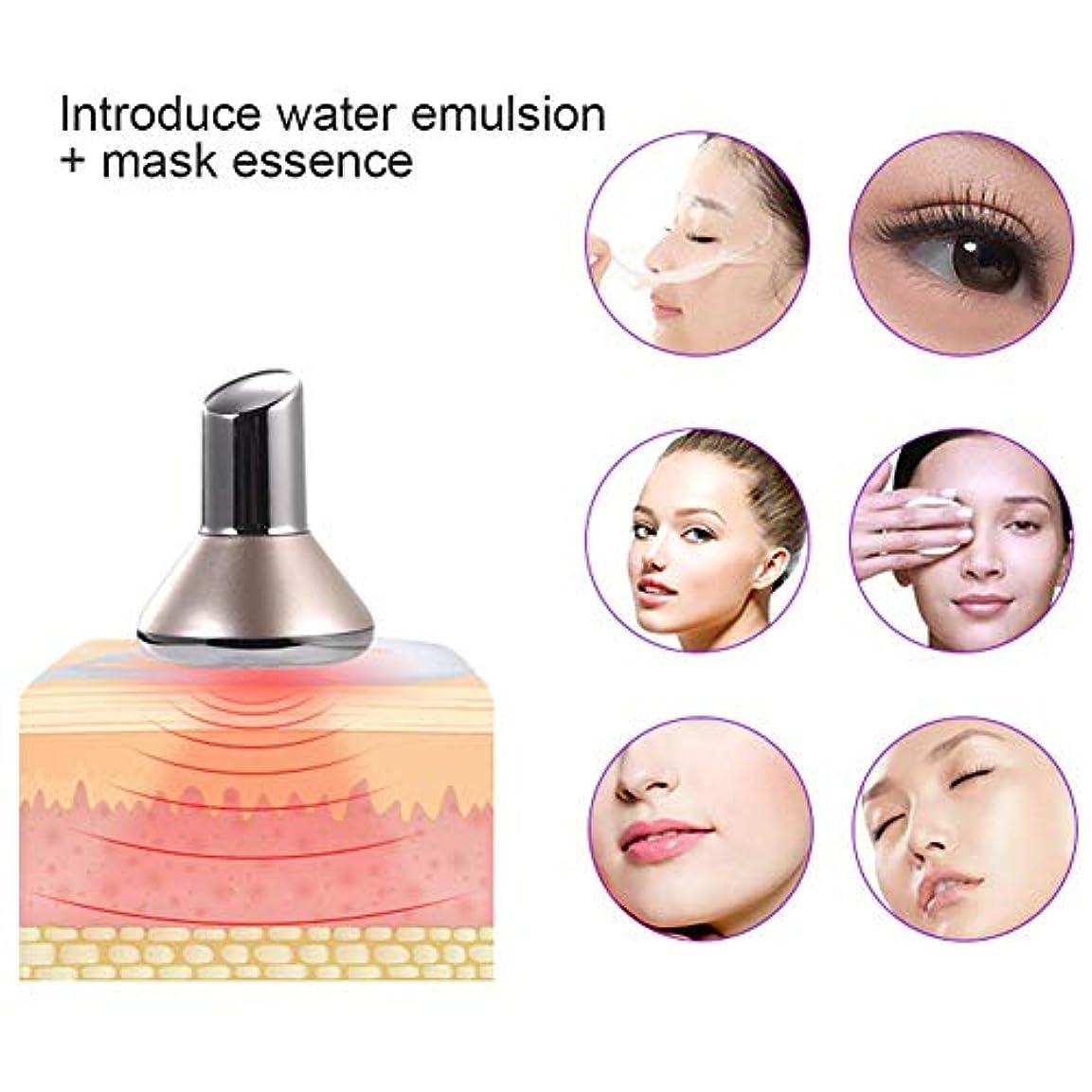 口頭信頼できるファイナンスポータブルマイクロバイブレーション磁気療法美容器具、吸収磁気フェイシャルマッサージャー美容スキンケア,金